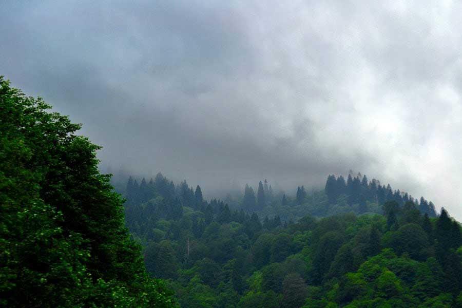 Ayder yaylasından sis manzarası, Ayder Yaylası fotoğrafları - Ayder Plateau photos