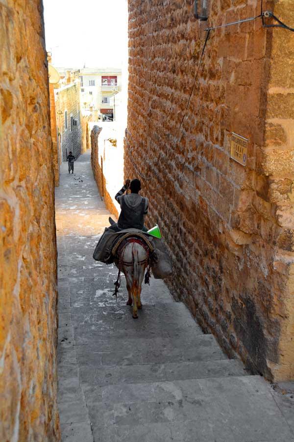 Mardin dar sokaklar ve çöpçü, Mardin fotoğrafları - garbage man and his donkey at Mardin streets, Southeastern Anatolia Mardin photos