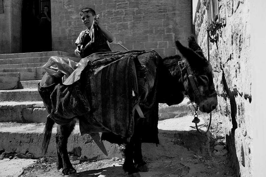 Mardin'de çöp toplama - garbage boy and his donkey at Mardin, Southeastern Anatolia Mardin photos