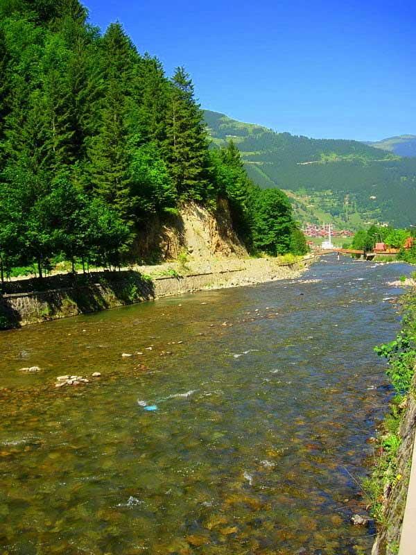 Uzungölü besleyen Demirkapı deresi, Uzungöl fotoğrafları - clear streams the rivers, Uzungöl photos