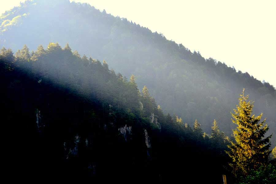 Uzungöl çevresindeki dağlar,Uzungöl fotoğrafları - mountains are my home, Uzungöl photos