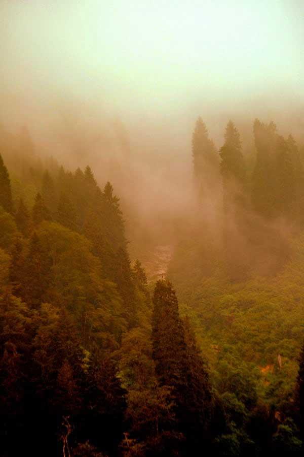 Uzungöl etrafındaki dağlarda sis, Uzungöl fotoğrafları - evening fog on the mountains, Uzungöl photos