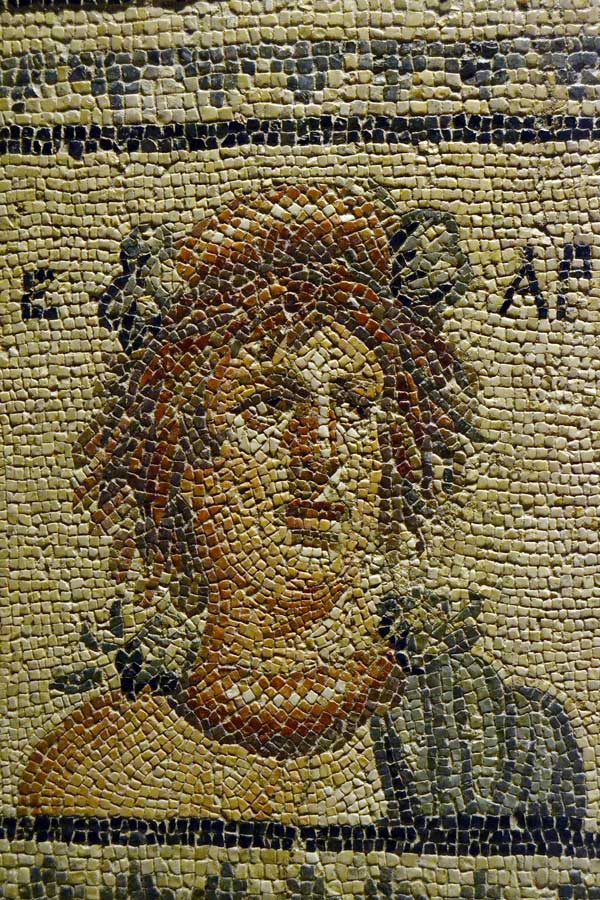 Zeugma Mozaik Müzesi fotoğrafları Mevsim tanrıçaları mozaiğinin parçası - Part of the Goddesses of the season mosaic, Zeugma Mosaic Museum Turkey