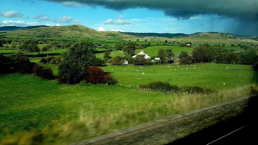 İngiltere rotası raylar, evler, kırlar, koyunlar, kuzular Crosscountry treni Edinburgh'dan Salisbury'e giderken - England route rails, cottages, grass, sheeps, lambs