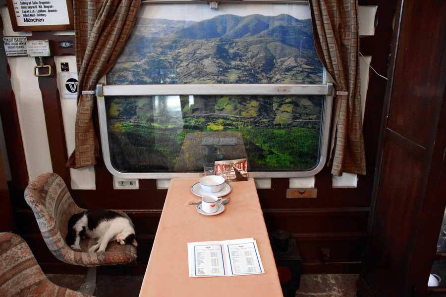 İstanbul Demiryolu Müzesi fotoğrafları, Barış Manço Kurtalan Eksperi vagonu canlandırması - Barış Manço - Kurtalan Express wagon animation, Istanbul Railway Museum photos