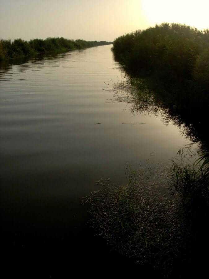 Büyük Menderes nehri deltası, Fethiye Karina güzergahı fotoğrafları - maeander river, Fethiye Karina route photos