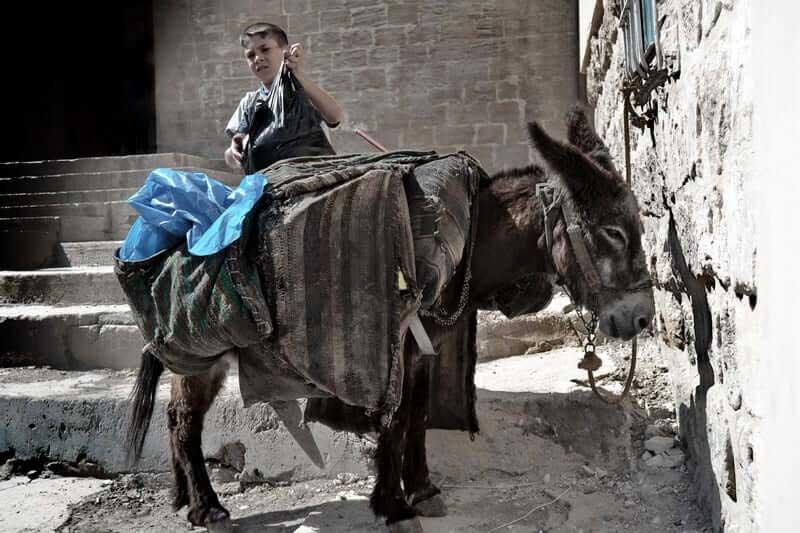Güneydoğu Anadolu güzergahı fotoğrafları Mardin'de çöpçü ve eşeği - Southeastern Anatolia route duster and his donkey in Mardin