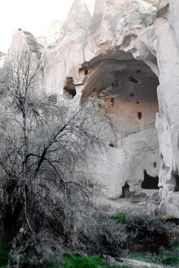 Zelve açık hava müzesi, Göreme, Ürgüp, Kapadokya fotoğrafları - Zelve openair museum, in the shade of tree and ston, Cappadocia photos