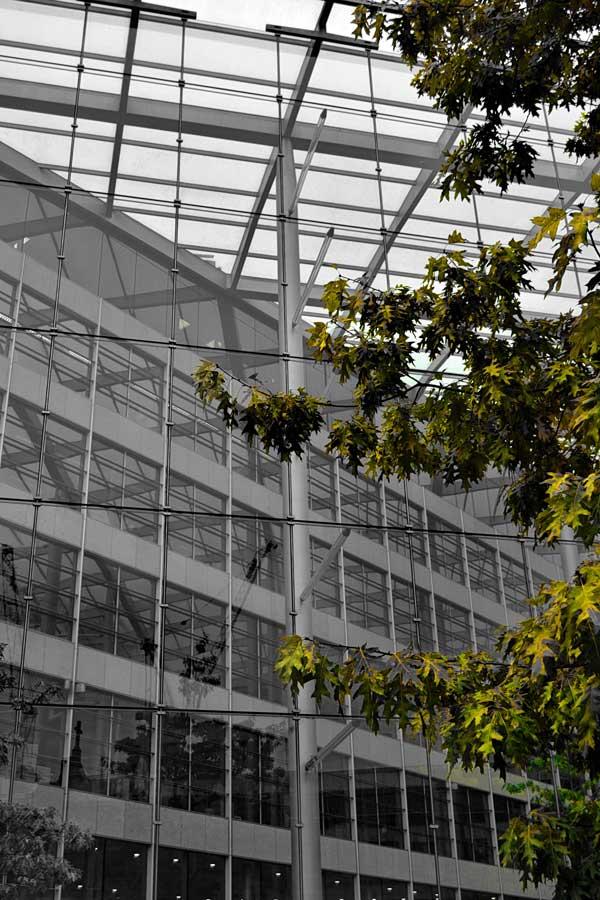 Londra fotoğrafları modern mimariden örnekler - London photos green brightens a gray work day