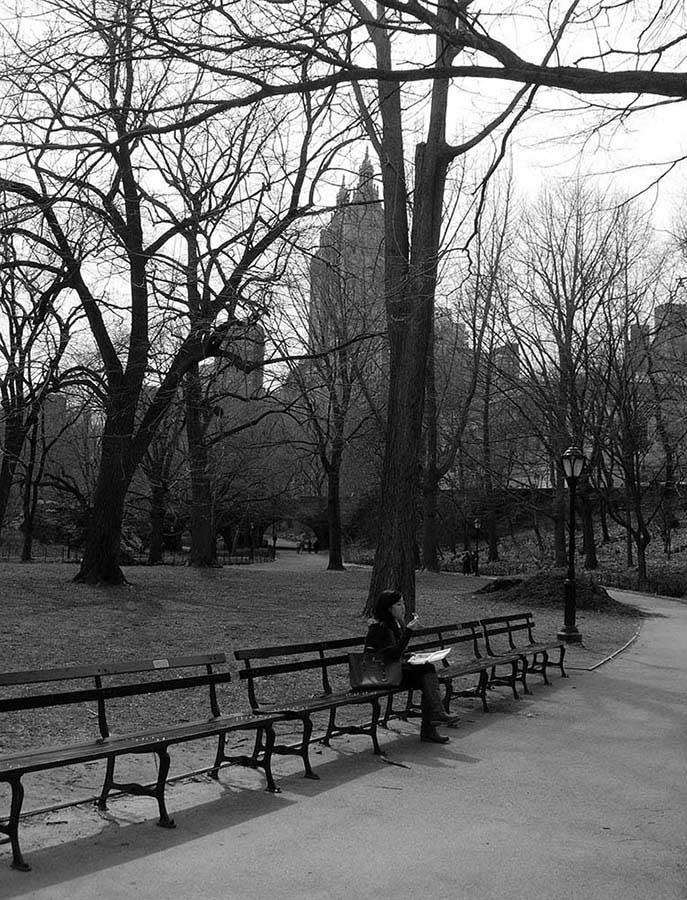 New York Central Park fotoğrafları