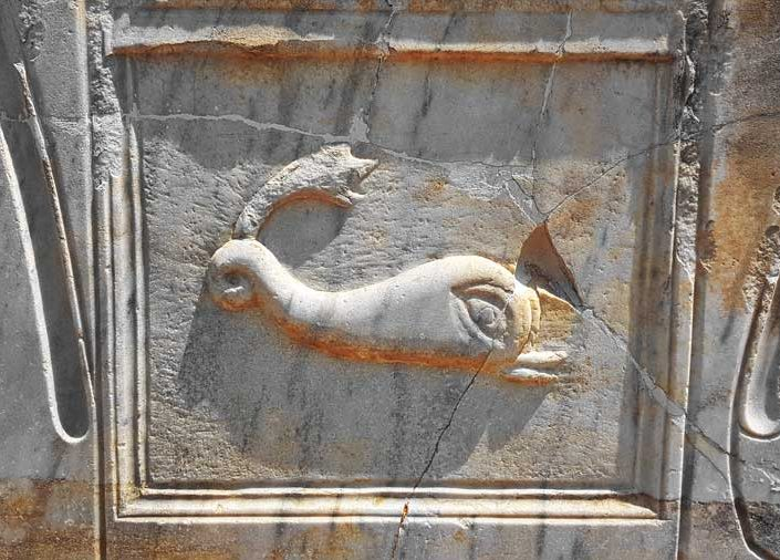 Perge antik kenti fotoğrafları, balık figürlü taş levha - Perge ancient city photos, stone block with fish engraving