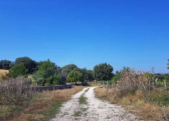 Uşak Clanudda antik kenti yolu Çırpıcılar köyü - Clanudda ancient city road