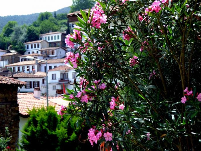 İzmir Selçuk Şirince köyü fotoğrafları - Sirince village photos
