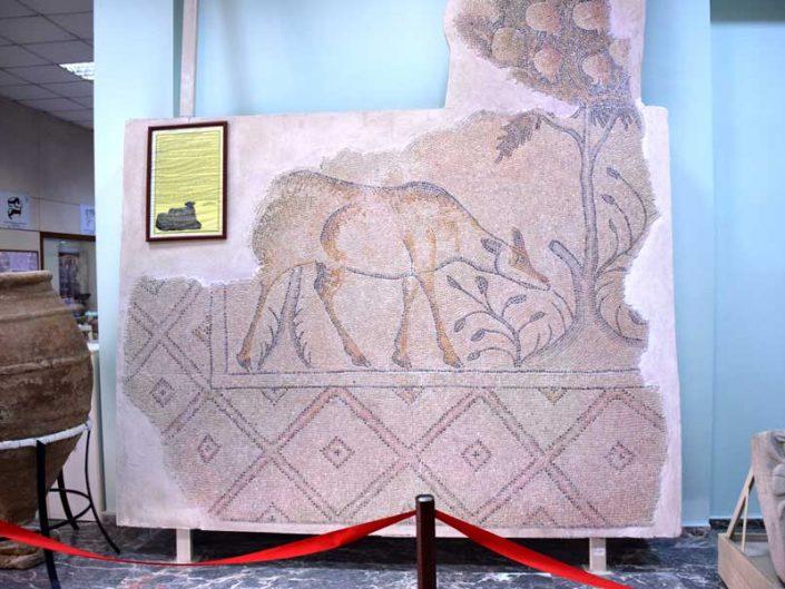 Malatya müzesi fotoğrafları otlayan karaca taban mozaiği - Mozaic of the grazing roe Roman age