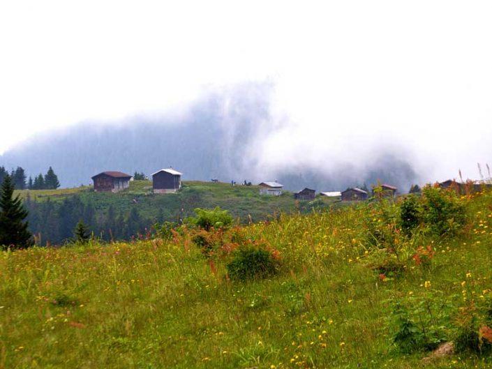 Pokut yaylası evleri ve Pokut yaylası fotoğrafları - Pokut plateau photos, Mansions