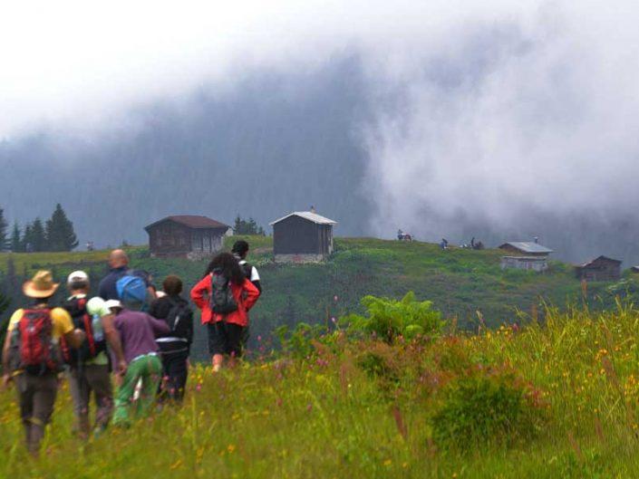 Pokut yaylası gezi fotoğrafları - Pokut plateau photos
