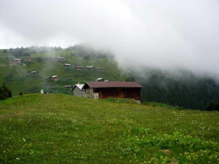Pokut yaylası ve tarihi evleri - The fog, Pokut plateau photos