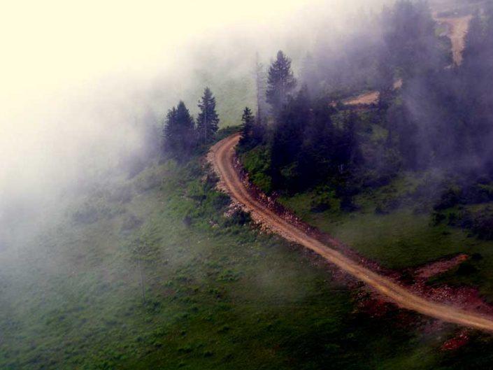 Pokut yaylası yolu ve sis - Pokut plateau photos