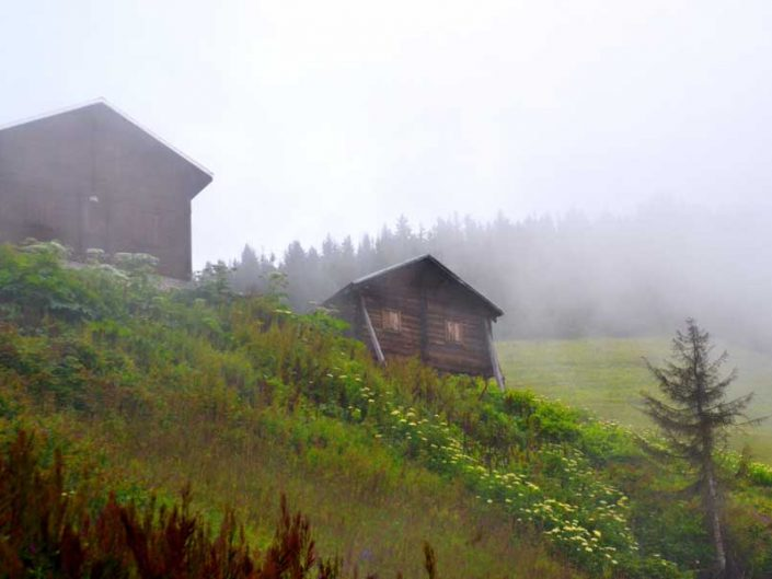 Sisli Pokut yaylası fotoğrafları - Pokut plateau photos